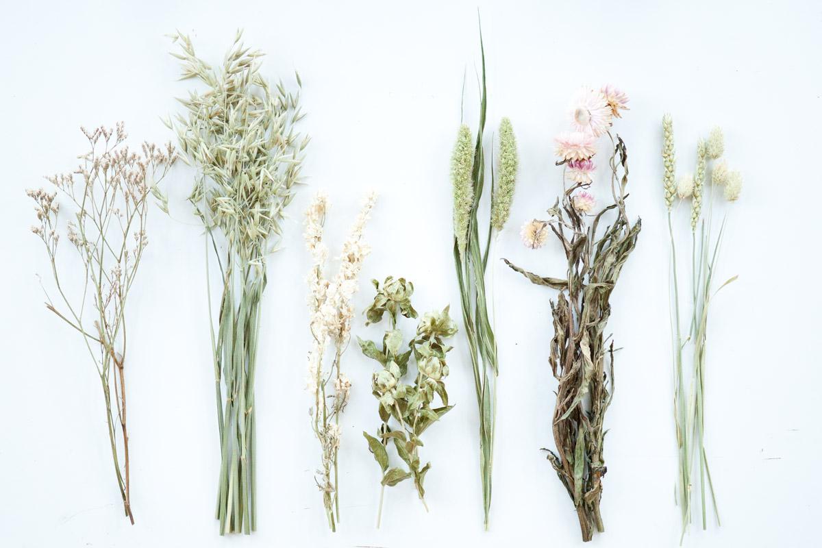 droogbloemen voor halve krans